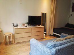 Living room LTL apartment
