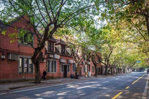 The Former French Concession (法租界) - a popular spot for expats to rent in Shanghai