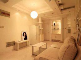 Living Room in the Studio Apartment