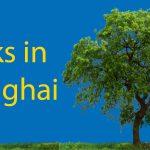 Parks in Shanghai: Xuhui Riverside Park Thumbnail