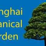 Gardens in Shanghai: The Shanghai Botanical Garden Thumbnail