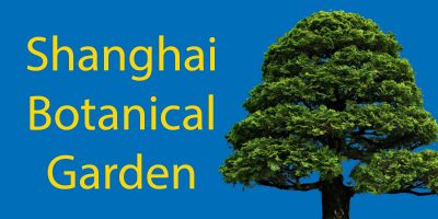 Gardens in Shanghai: The Shanghai Botanical Garden