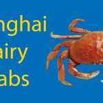 Shanghai Hairy Crabs - A Must-Try Local Delicacy Thumbnail