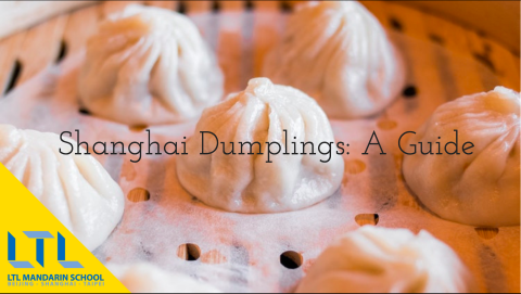 Shanghai Dumplings – The Ultimate Guide