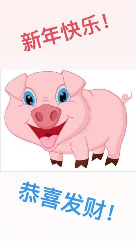 Chinese New Year greetings - 2019 is the year of the pig