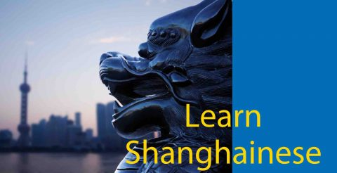 Learn Shanghainese : A Beginner's Story 📖