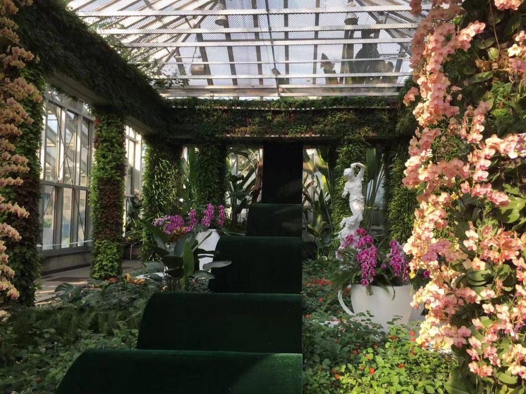 Visit the Garden's of Shanghai