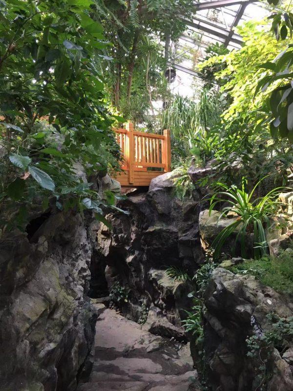 The Shanghai Botanical Garden