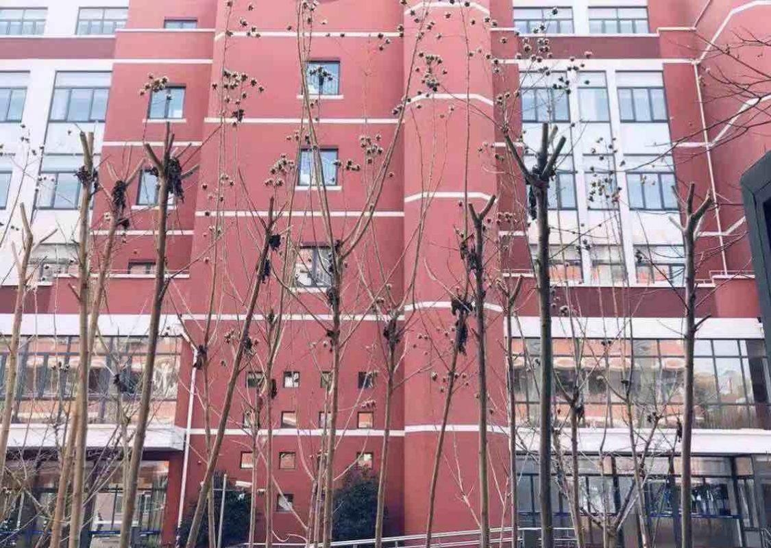 High School in Shanghai
