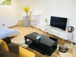 Serviced Apartments at LTL Shanghai