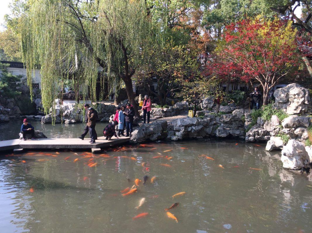 Yu Yuan / Yu Garden in Shanghai - A Beautiful Setting